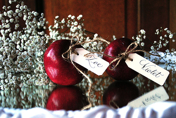 escort card calligraphy tags