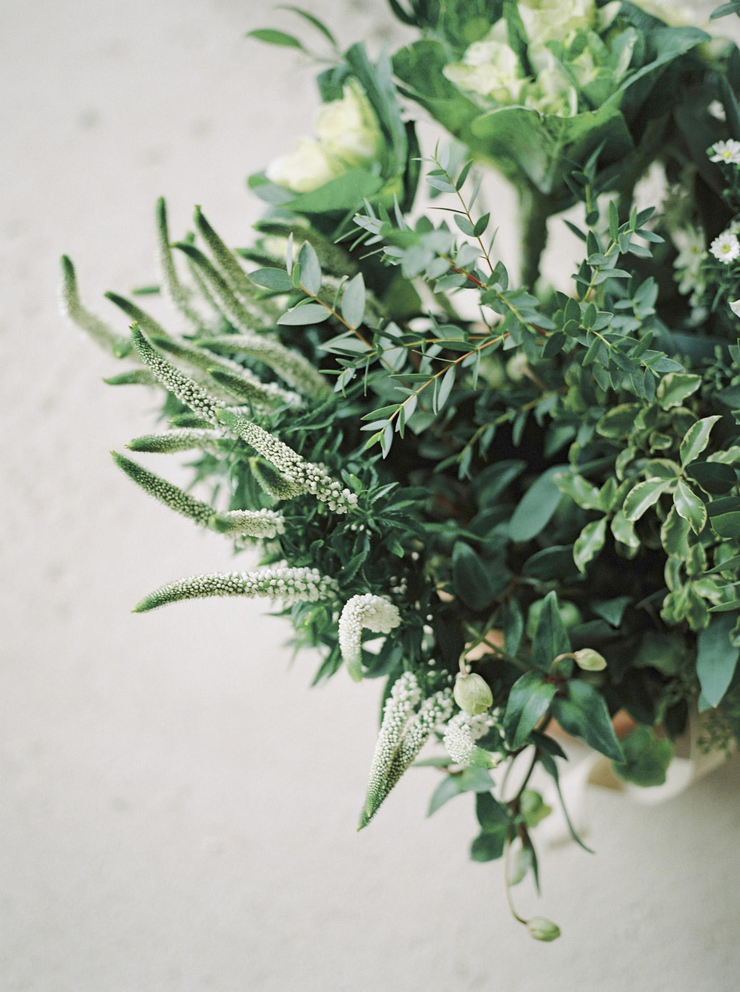 20141106_Elegant Rustic Organics_TF_
